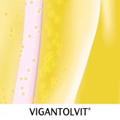 3D Commerical – Vigantolvit